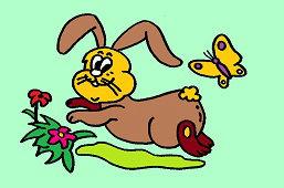 Zajačik ušiačik