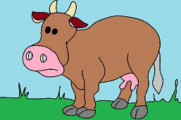 Krava domáca