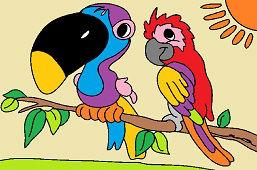 Nádherné papagáje