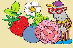 Záhradné ovocie