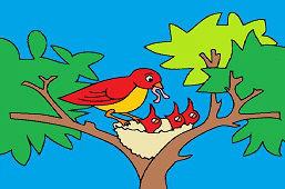 Hladné vtáčatá