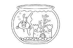 Izbové akvárium