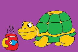Zvedavá korytnačka