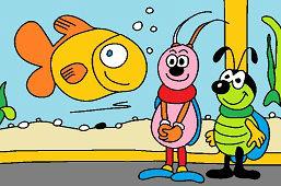 Chrobáci a akvárium