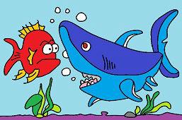 Stretnutie so žralokom