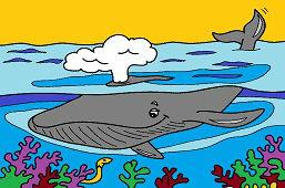 Veľryba v oceáne