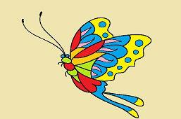Krásny motýľ