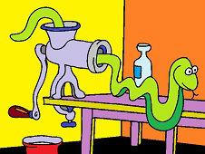 Had v kuchyni