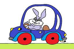 Zajac v aute