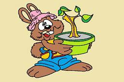 Zajac pestovateľ