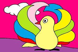 Pestrofarebný vták