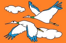 Letiace volavky