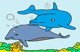 Dva delfíny