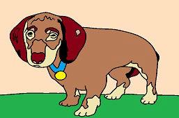 Poľovný pes