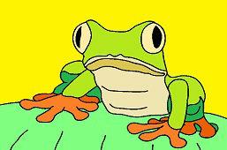 Okatá žaba