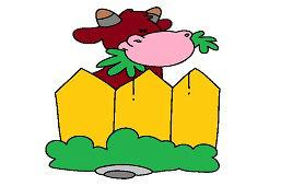 Krava za plotom