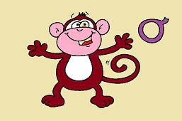 O ako opica
