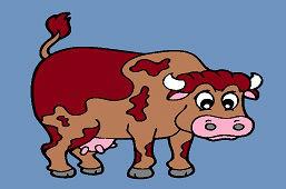 Ryšavá krava
