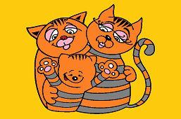 Mačacia rodina