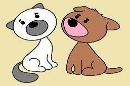Psík a mačka
