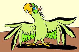Zelený papagáj