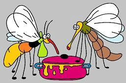 Komáre na hostine