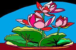 Kvety v miske