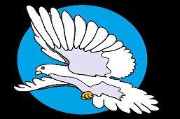 Biela holubica