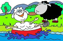 Ovce pri vode