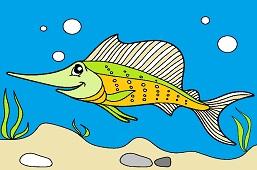 Mečúň ryba