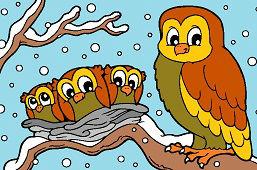 Sovy v zime