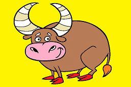 Rohatý býk