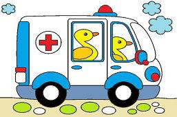 Ambulancia pre zvieratká