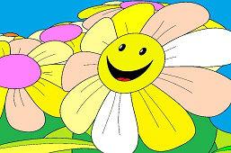 Kvety sedmokrásky